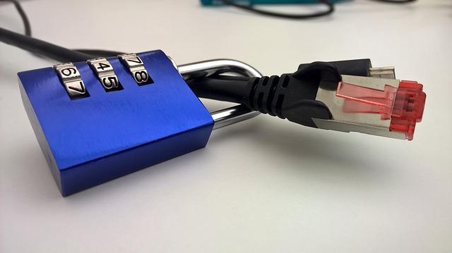 Henry? Sind meine Daten jetzt sicher? | Foto: pixabay.com